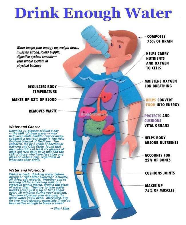 http://www.brainstrom.org/wp-content/uploads/2012/12/Drink-Enough-Water.jpg